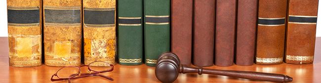 Consulenza sul Diritto del Lavoro e della Sicurezza Sociale